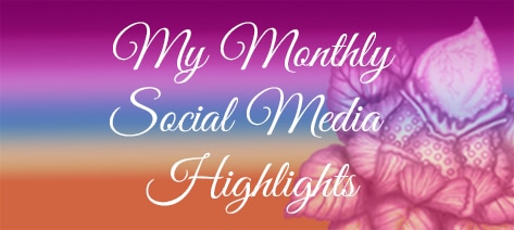 blog category button my monthly social media highlights. click here